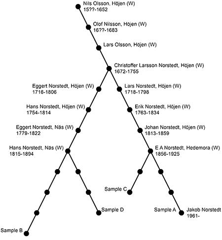 Släktträd Höjen