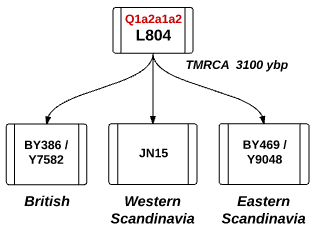 Q-L804 and it's three branches