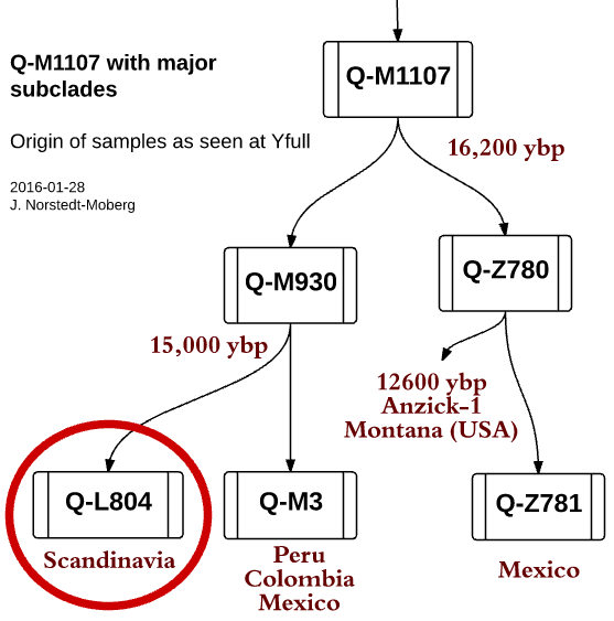 Q-L804 and it's neighbor clades with time estimates from Yfull for branching. ybp = Years before present